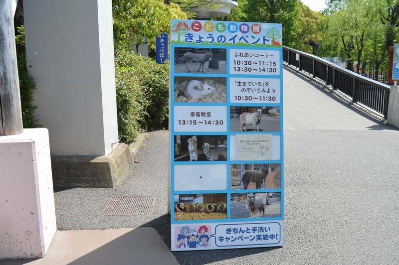 ゴールデンウィーク、子供優先で上野動物園を楽しむ方法