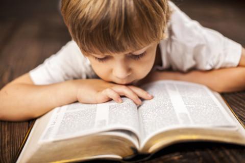 読書感想文で低学年(小3.2.1)でも書きやすい本の選び方、書き方