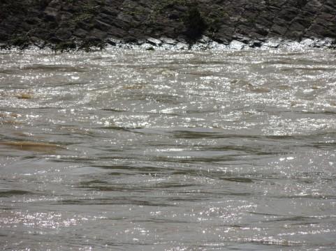 水害の保険って何があるんでしょうか、家、住宅、車ちょっと心配です。