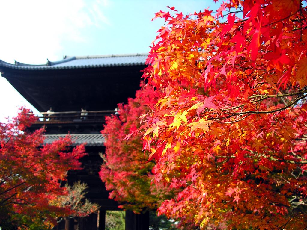 水路閣・紅葉・三門の南禅寺へのアクセス方法と紅葉の見ごろ時期