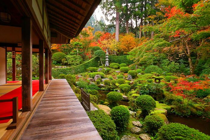 京都大原三千院の紅葉の見頃と混雑回避情報&アクセス方法