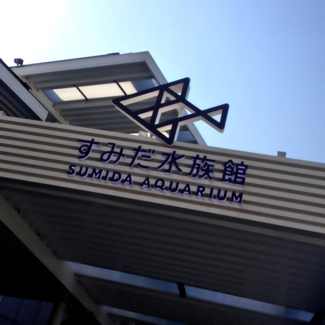 すみだ水族館(東京スカイツリー)の値段、割引やクーポン、年パスについて