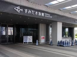 東京スカイツリーの水族館(すみだ水族館)の混雑状況、混み具合について