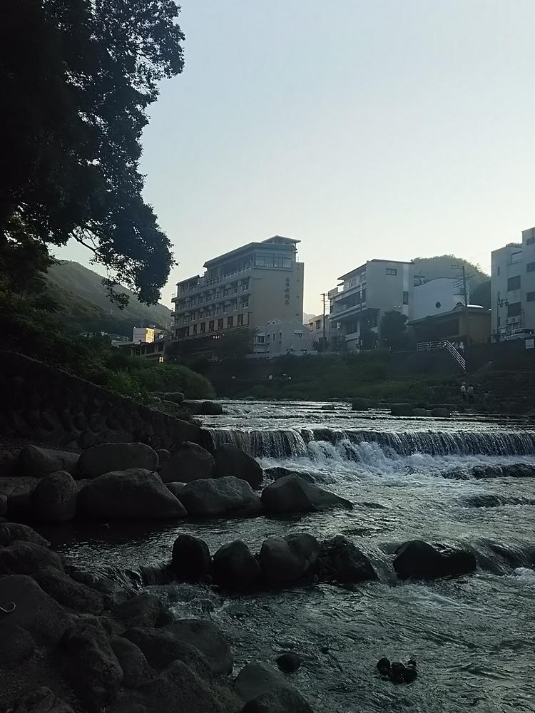 箱根観光に子供といってきました。攻略は「フリー切符」と周遊場所!